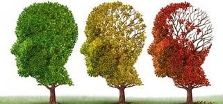 Dementia_trees.jpg