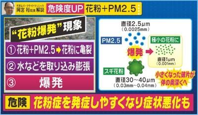 インフル花粉PM2.5 -5.jpg