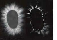 Kirlian-Image.jpg