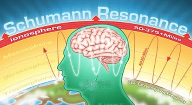 脳の周波数もシューマン波と一致(当時は7.83Hz)