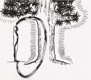 Tree-Healing-1.png