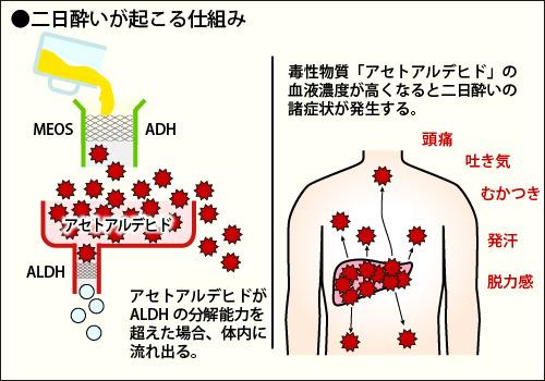 alcoholysis_02.jpg